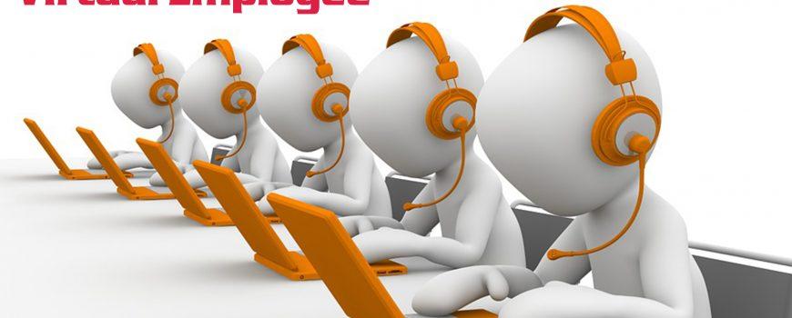Virtual Employee Services