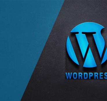 WordPress Custom Module Development Service