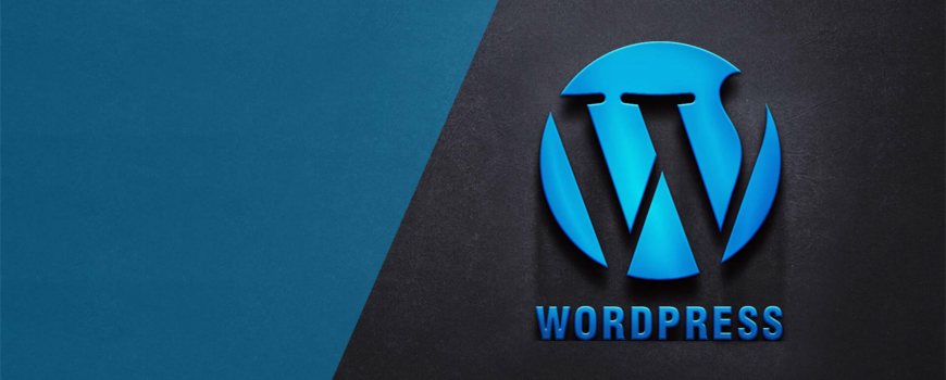 WordPress Custom Module Development Service